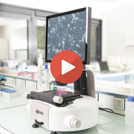 Monitor your cell culture directly on the bench