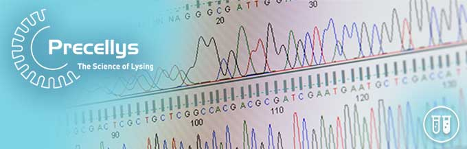 High quality RNA extraction with Precellys